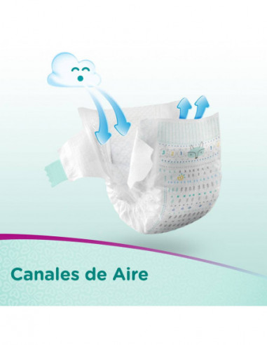 Pampers Premium Care Pañales...